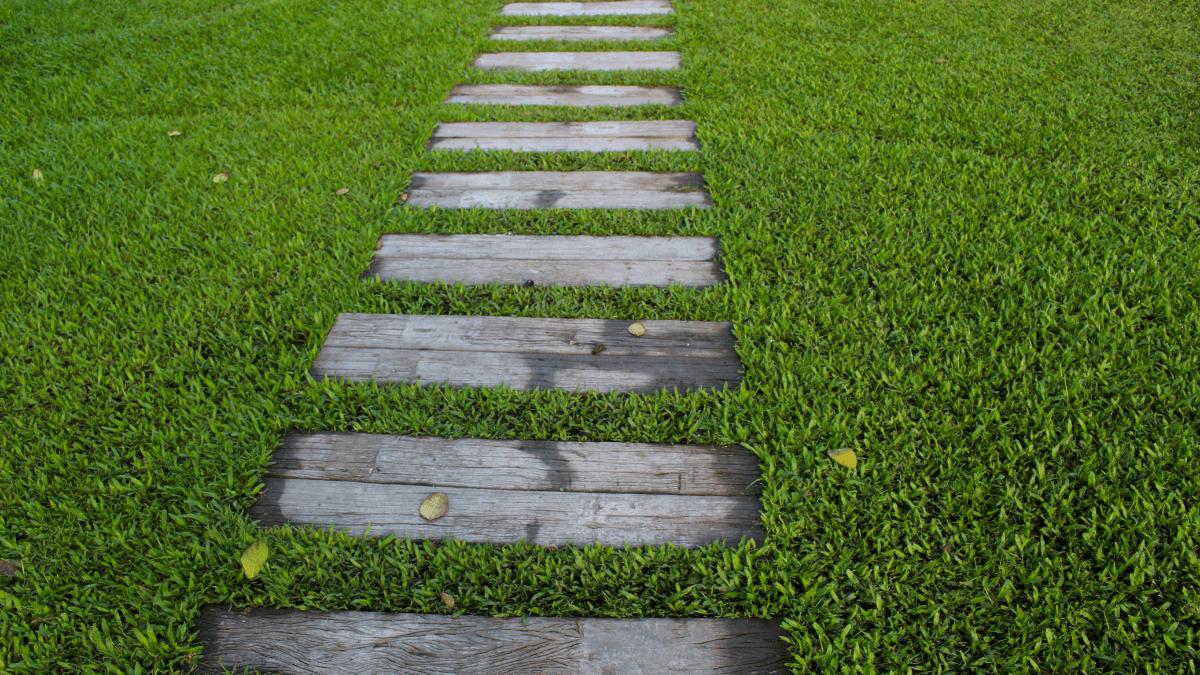 Giardiniere a Civitavecchia
